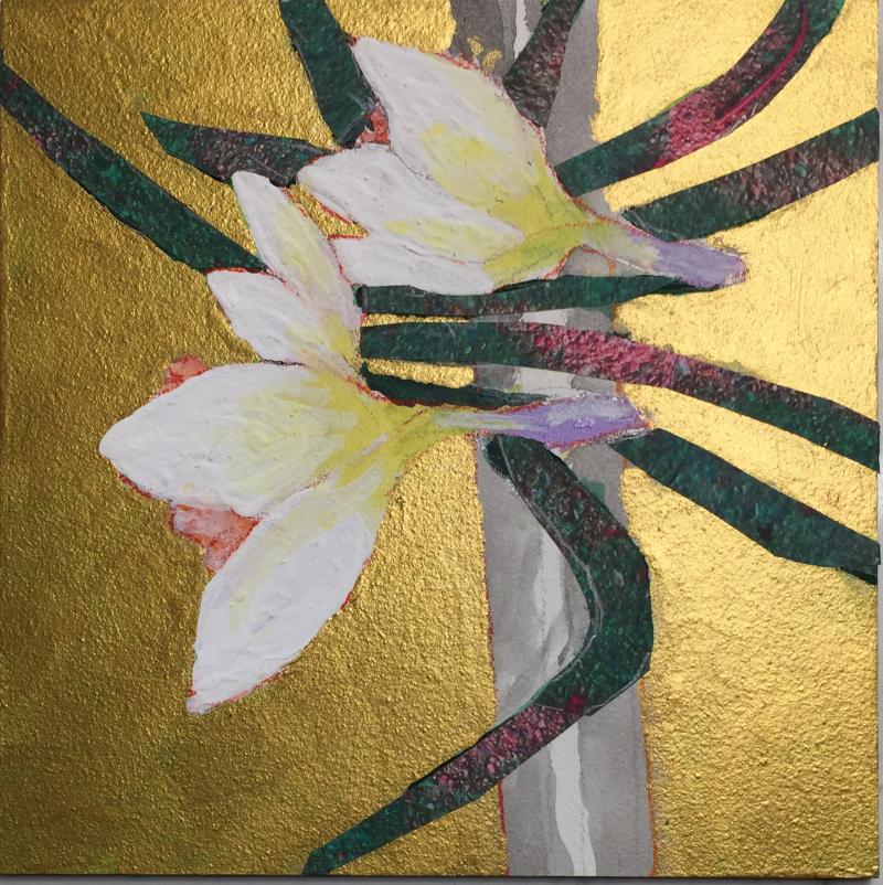 BVS Daffodilsn 2020